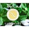 Gum Mint (Жвачка с Мятой)