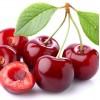 Cherry (вишня)