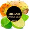 Cactus lime M105 (Кактус+лайм)
