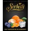 Ice Tangerine Blueberry (Айс Мандарин Черника)