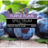 Purple Plums (Слива)